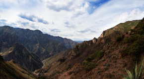 Copper Canyon Thumb