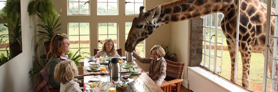Breakfast at Giraffe Manor