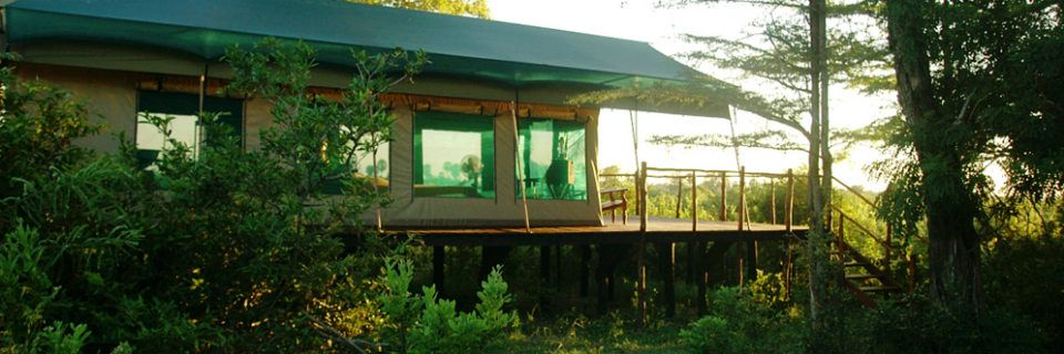 Stilted tent at Impala Camp