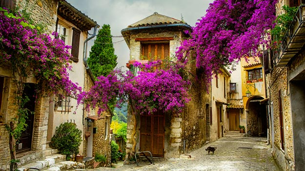 Provence-town.jpg