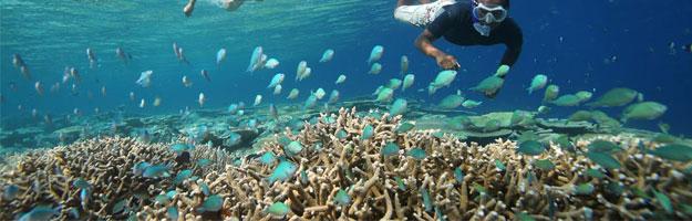Anantara Kihavah, Maldives