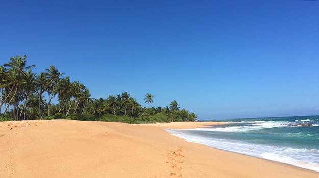 beach-tangalle