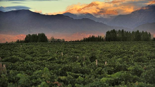Mendoza Harvest Festival, Argentina