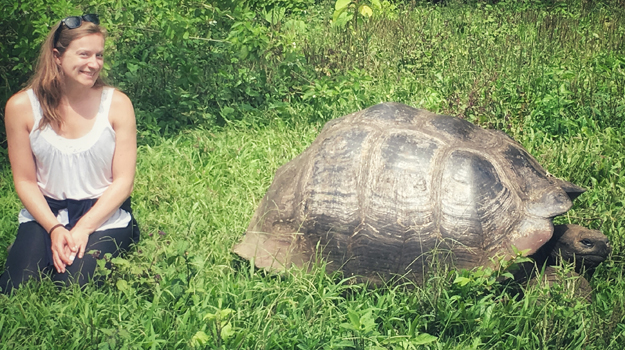 Galapagos, tortoise