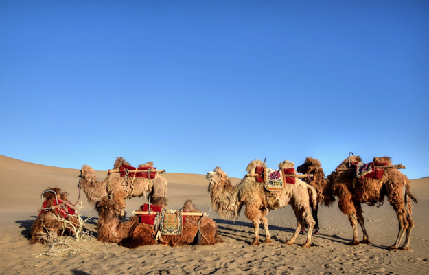 Silk Road, Far West