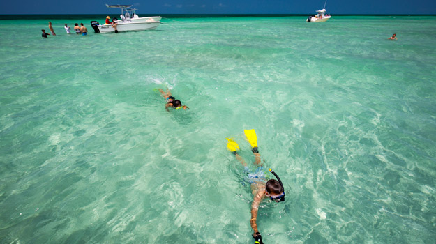 Snorkelling in the Florida Keys