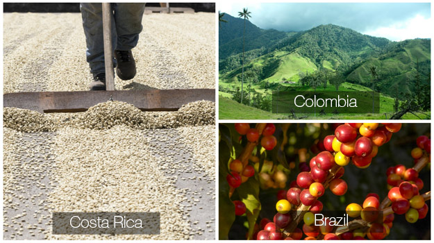 South and Central America coffee