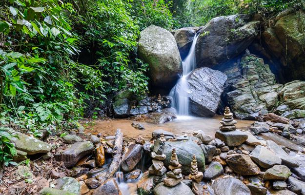 Tijuca National Park, Rio de Janeiro