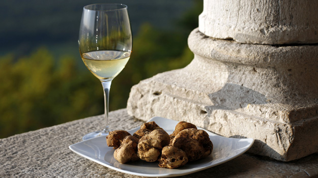 Truffles and Wine in Croatia | Exsus Blog